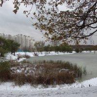 Ноябрь в Москве, больше похожий на декабрь :: Андрей Лукьянов