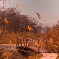 Осенний переход :: Жанетта Буланкина