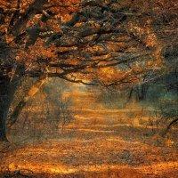 Пожар :: Cергей Дмитриев