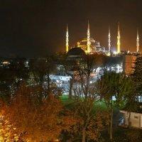 Голубая мечеть.Стамбул :: Алексей Писарев