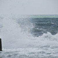 Просто волны, просто горизонт... :: Яков Геллер