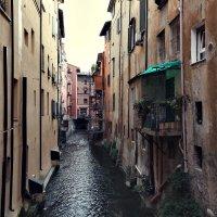 Болонья в окошке, Италия :: Larisa Ulanova