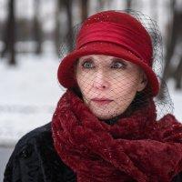 Дама :: Владимир Горубин
