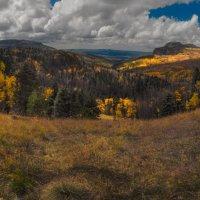 вид на осень :: svabboy photo