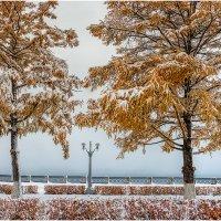 зимняя осень. :: олег кирюшкин
