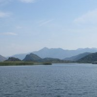 №2 Черногория. Скадарское озеро. :: Лариса (Phinikia) Двойникова
