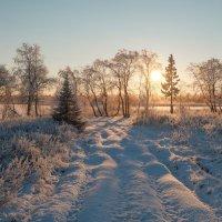 Дорога к солнцу..... :: Олег Кулябин