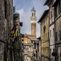narrow streets of Siena :: Dmitry Ozersky