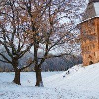 Еще не зима :: Евгений Никифоров
