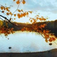 Еще осень... :: Евгения К