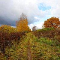 Золотая осень :: Маргарита Батырева