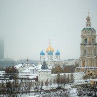 Новоспасский монастырь.Москва. :: Viktor Nogovitsin