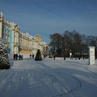 Мороз и солнце...ноябрь чудесный..)) :: tipchik