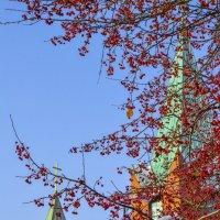 лакомство для птиц небесных :: Натали Акшинцева