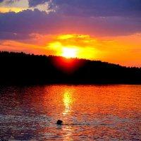 Растворяясь в закате. :: Ilya Goidin
