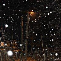 Снежок :: Валерия