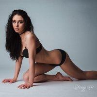 lioness :: Теймур Рзаев