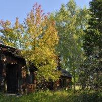 Старый дом 2 :: Евгений Карский