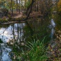 Осенью на Черной речке :: Игорь Кузьмин
