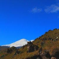 На склонах Эльбруса. Высота около 2400м. :: Vladimir 070549