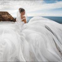 Танец ветра :: Алексей Латыш