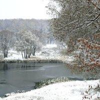Первый снег. :: Инна Щелокова