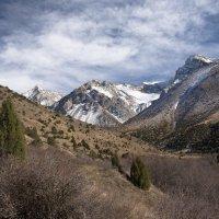 Ноябрь в горах :: Александр Грищенко