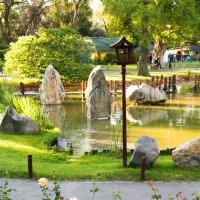 Японский сад в Буэнос-Айресе :: Yulia Venediktova