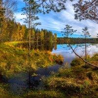 Осень на берегу озера :: Фёдор. Лашков