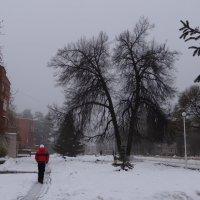 Моя улица :: Юрий Владимирович 34
