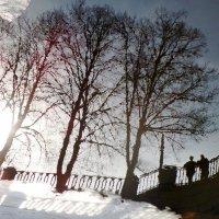 Свидание с Весной... :: Марина Харченкова