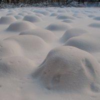 Снежные кочки :: Валерий Толмачев