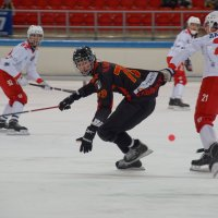 Открытый хоккей :: Андрей Горячев