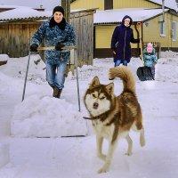 Семейный подряд...)) :: Владимир Хиль