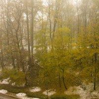 снег в октябре :: Владимир Зырянов
