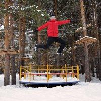 Ура зима :: Владимир Петухов