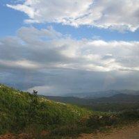 Черногория. На горной дороге. :: Лариса (Phinikia) Двойникова