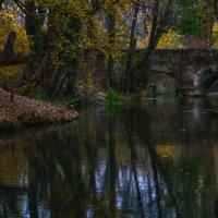Осень на Черной речке :: Игорь Кузьмин