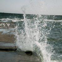 Брызги соленого моря :: Валерьян Бек (Хуснутдинов)