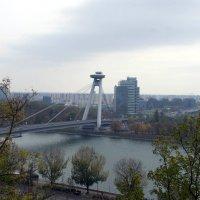 Мост СНП (Братислава) :: Irina Shtukmaster