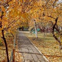 Теплая осень :: Владимир