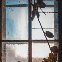 старый дом :: Artem72 Ilin