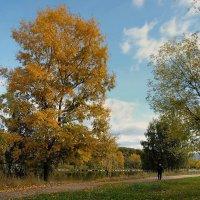 Осень... :: анна нестерова