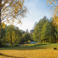 Осень золотая 4 :: Виталий