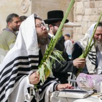 Jerusalem- Sukkot :: Павел L