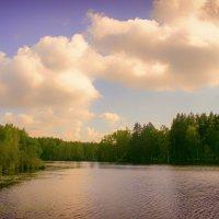 луковое озеро :: Екатерррина Полунина