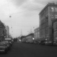 Белые ночи :: galina bronnikova