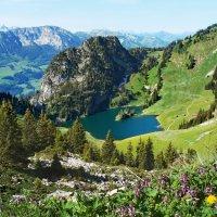 лето катится с горы :: Elena Wymann