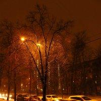 Оранжевый уровень опасности снегопада в Москве :: Андрей Лукьянов