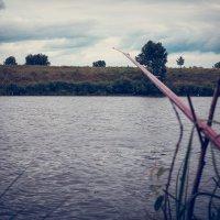 Рыбалка :: Валентина Захаренко